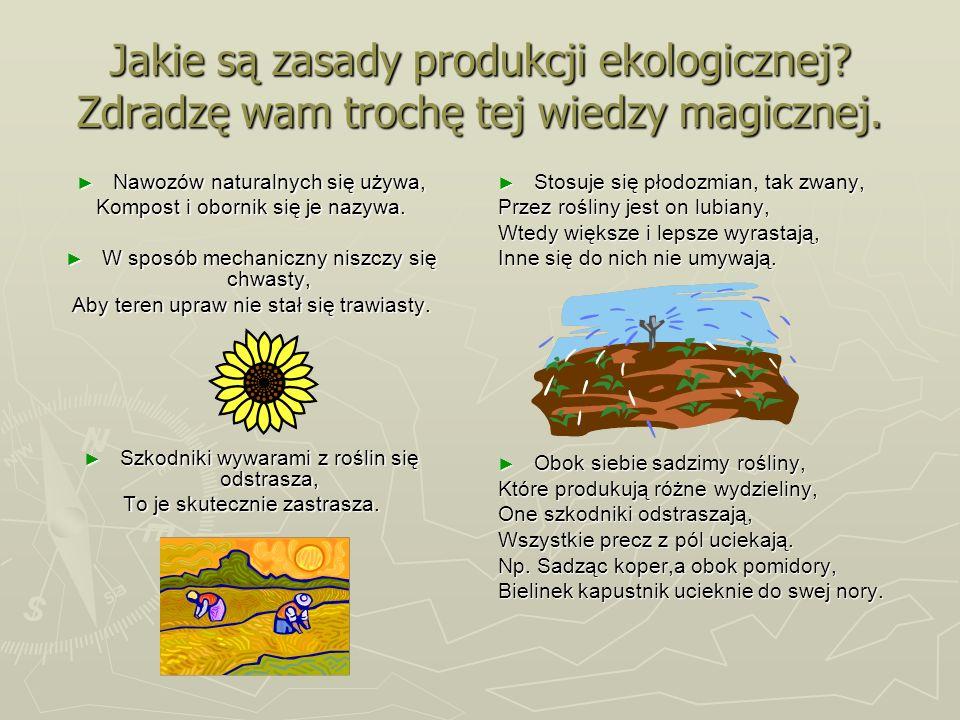 Jakie są zasady produkcji ekologicznej