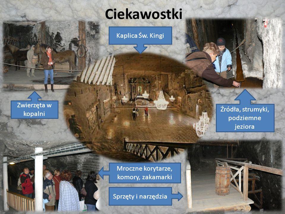 Ciekawostki Kaplica Św. Kingi Zwierzęta w kopalni
