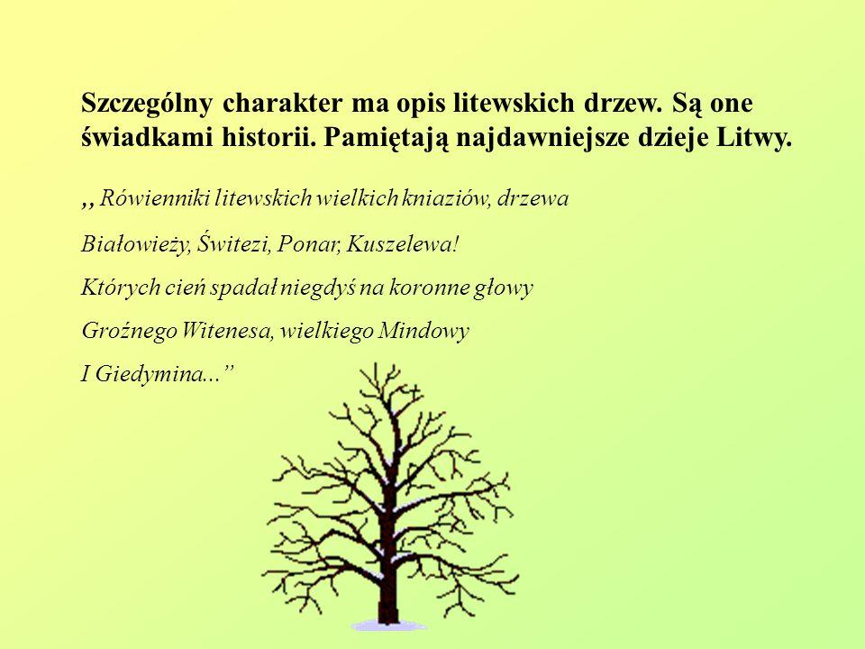 """""""Rówienniki litewskich wielkich kniaziów, drzewa"""