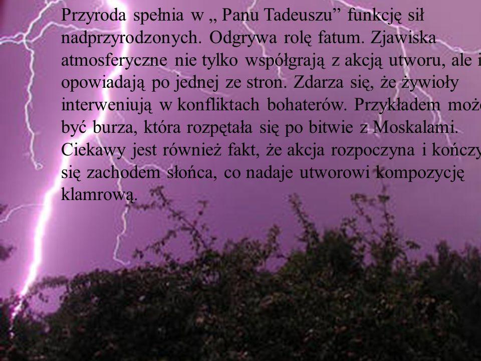 """Przyroda spełnia w """" Panu Tadeuszu funkcję sił nadprzyrodzonych"""