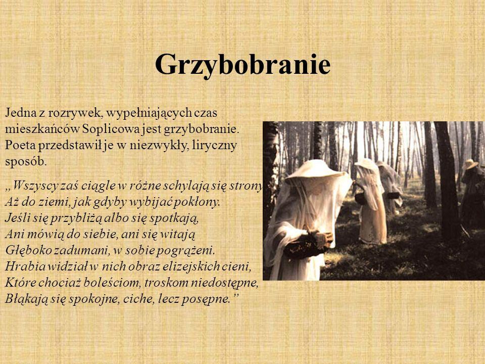 Grzybobranie Jedna z rozrywek, wypełniających czas mieszkańców Soplicowa jest grzybobranie. Poeta przedstawił je w niezwykły, liryczny sposób.