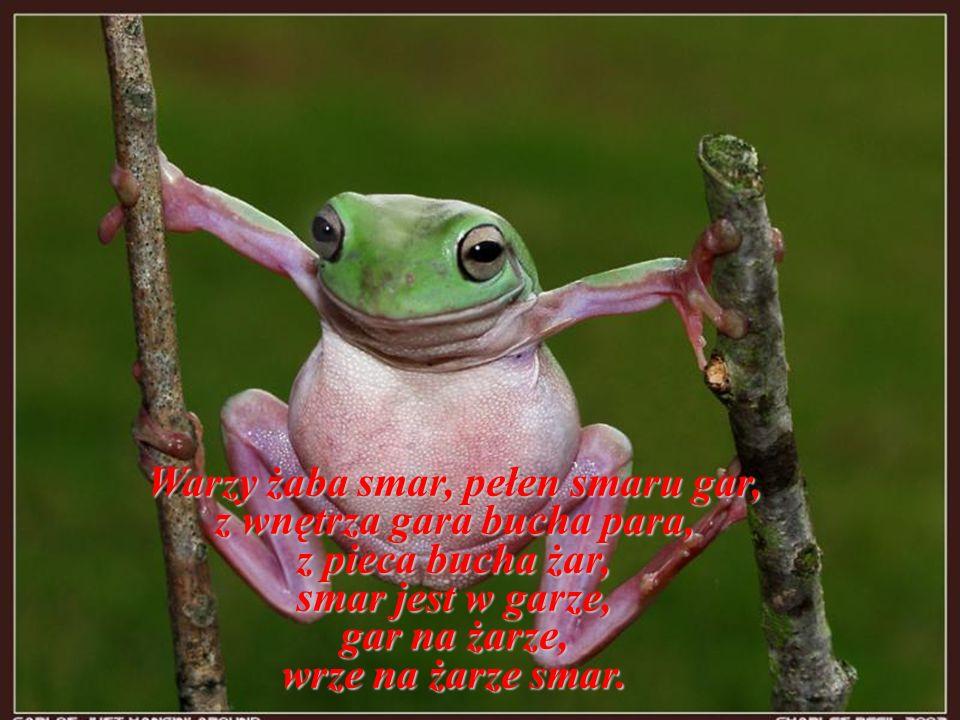 Warzy żaba smar, pełen smaru gar, z wnętrza gara bucha para,