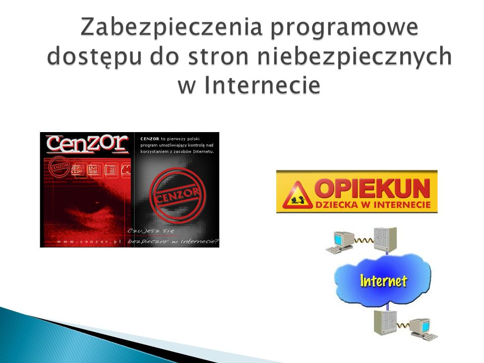 Zabezpieczenia programowe dostępu do stron niebezpiecznych w Internecie