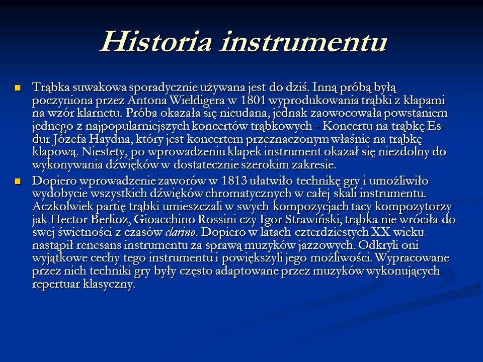 Historia instrumentu