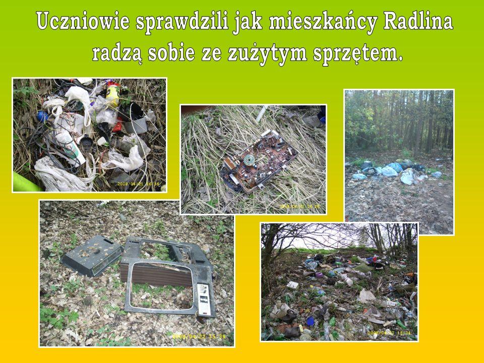 Uczniowie sprawdzili jak mieszkańcy Radlina