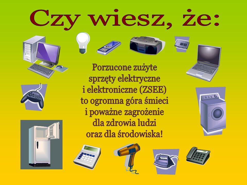 i elektroniczne (ZSEE)