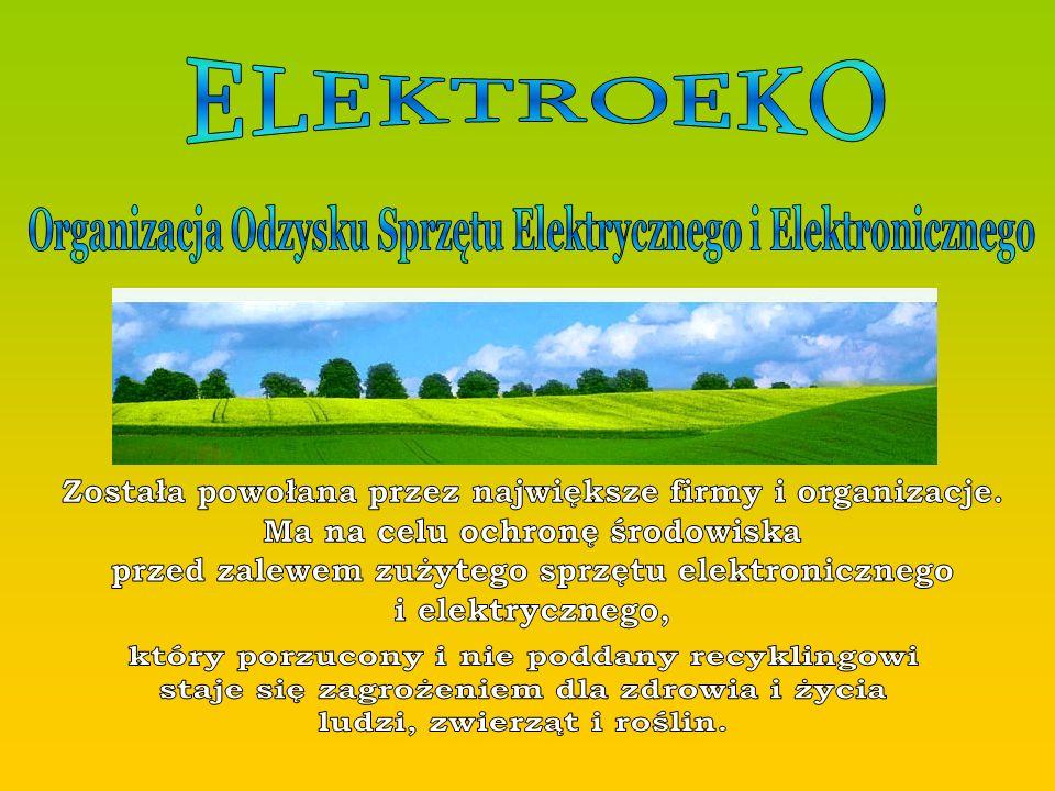 Organizacja Odzysku Sprzętu Elektrycznego i Elektronicznego