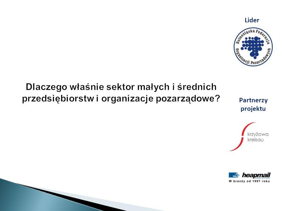 Lider Dlaczego właśnie sektor małych i średnich przedsiębiorstw i organizacje pozarządowe Partnerzy projektu.