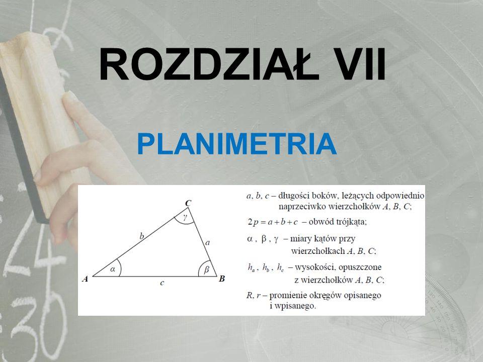 ROZDZIAŁ VII PLANIMETRIA