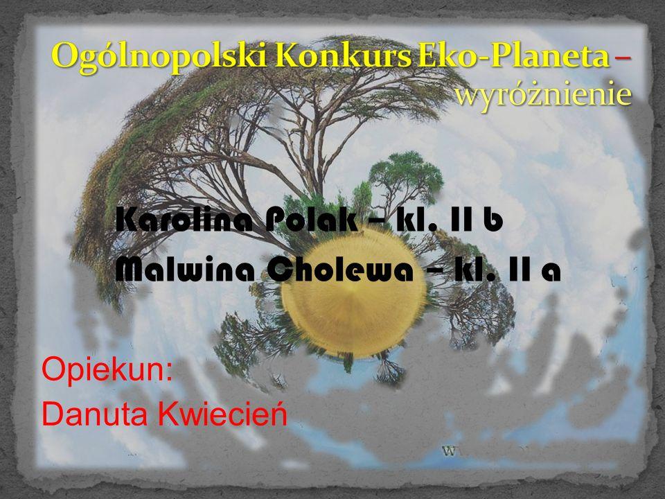 Malwina Cholewa – kl. II a