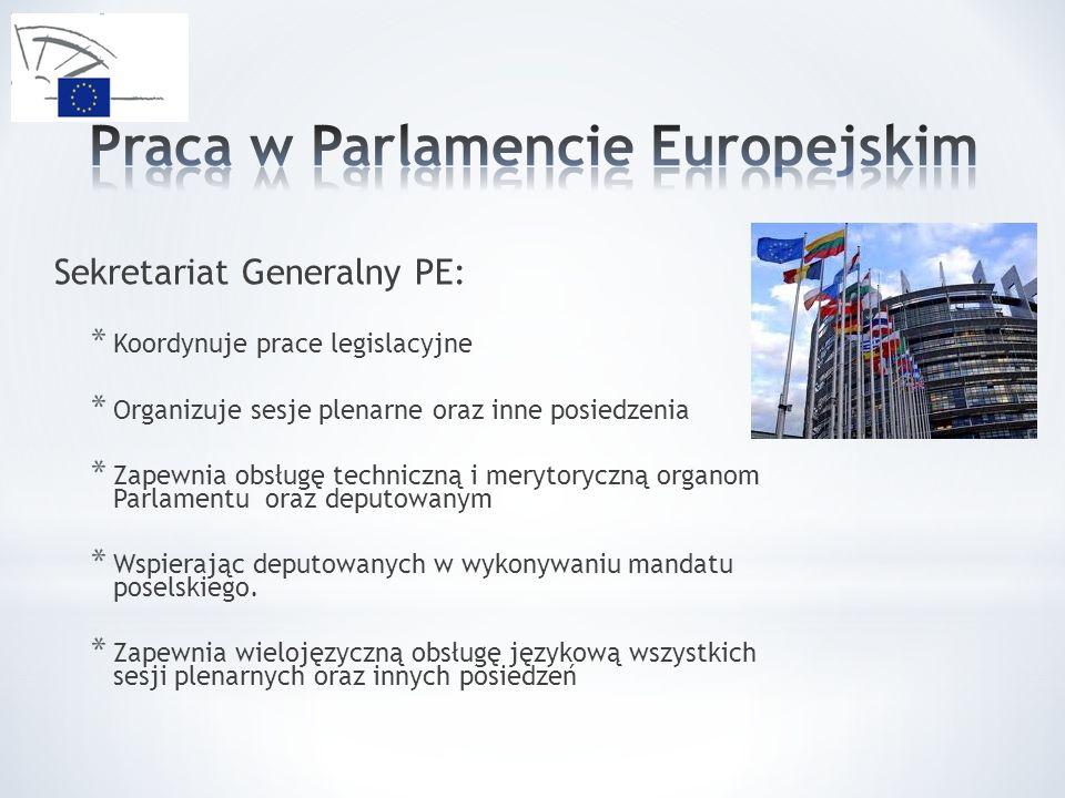 Praca w Parlamencie Europejskim