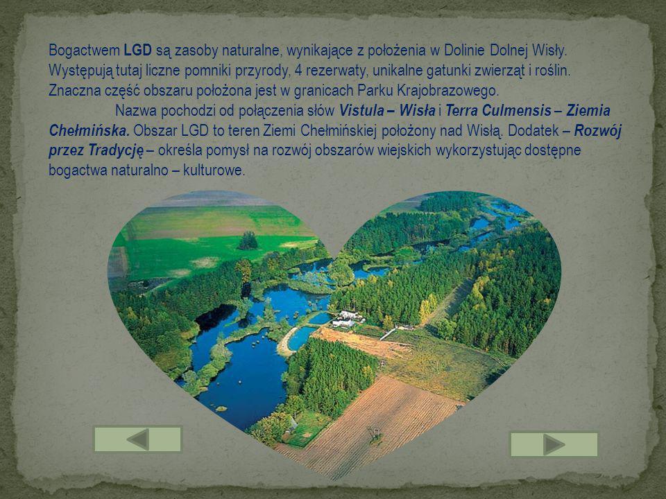 Bogactwem LGD są zasoby naturalne, wynikające z położenia w Dolinie Dolnej Wisły. Występują tutaj liczne pomniki przyrody, 4 rezerwaty, unikalne gatunki zwierząt i roślin. Znaczna część obszaru położona jest w granicach Parku Krajobrazowego.