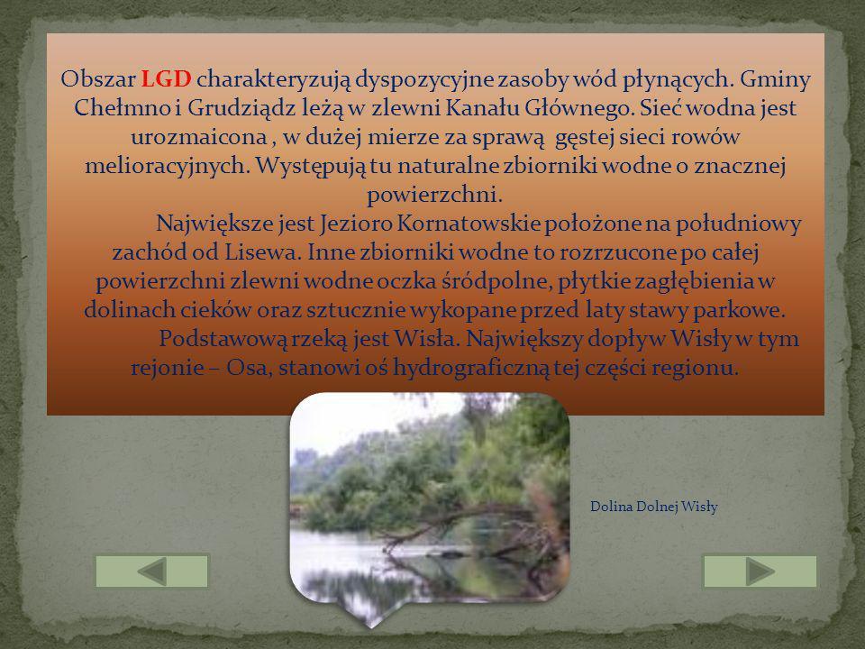 Obszar LGD charakteryzują dyspozycyjne zasoby wód płynących