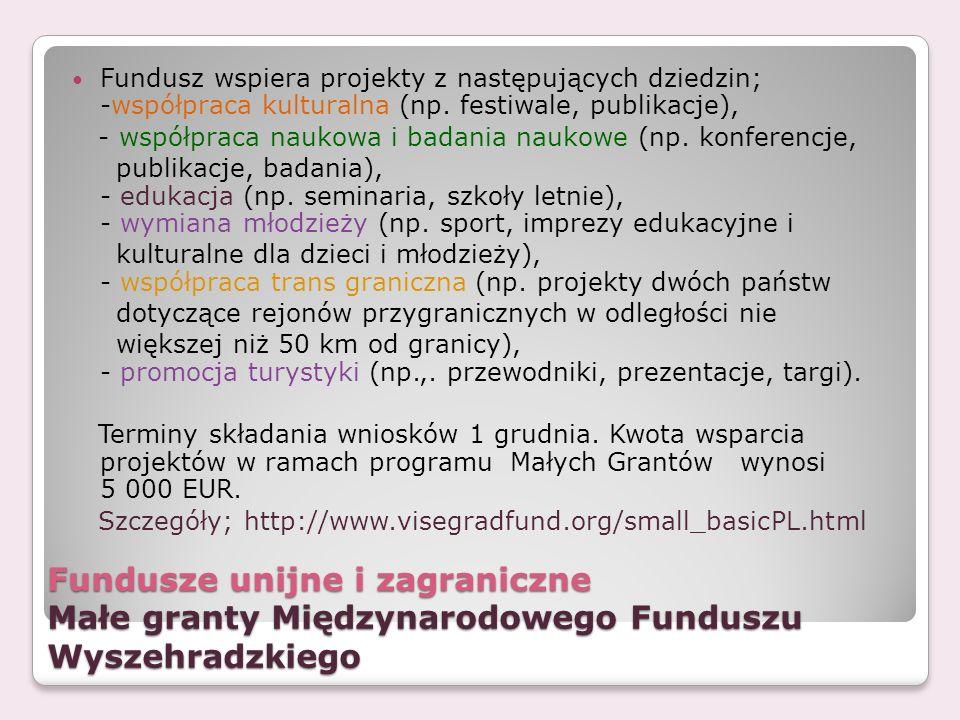 Fundusz wspiera projekty z następujących dziedzin; -współpraca kulturalna (np. festiwale, publikacje),