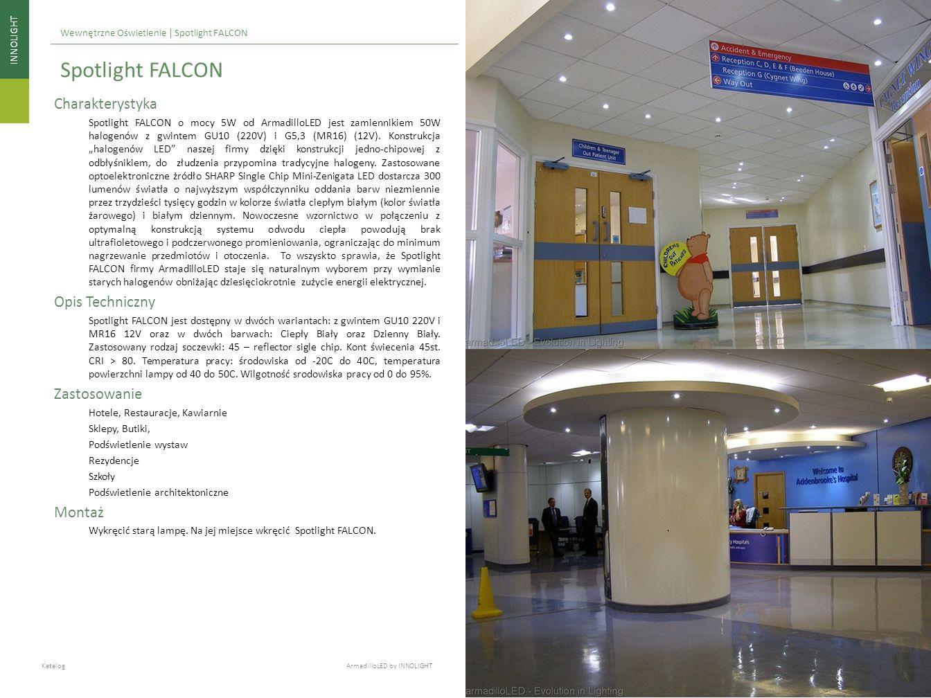 Spotlight FALCON Charakterystyka Opis Techniczny Zastosowanie Montaż