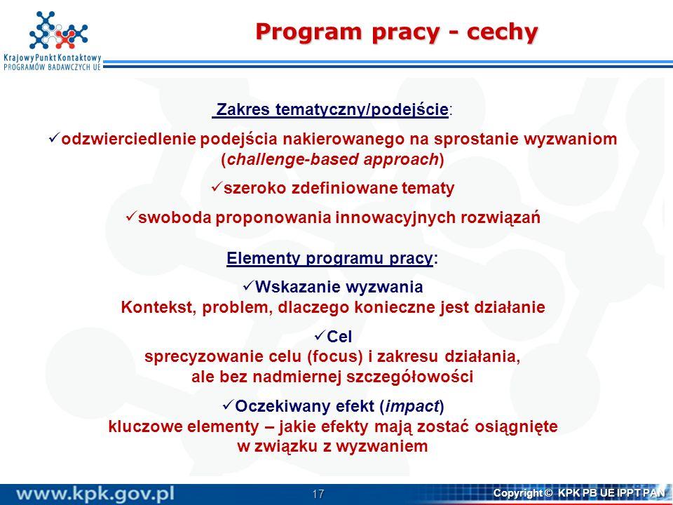 Program pracy - cechy Zakres tematyczny/podejście:
