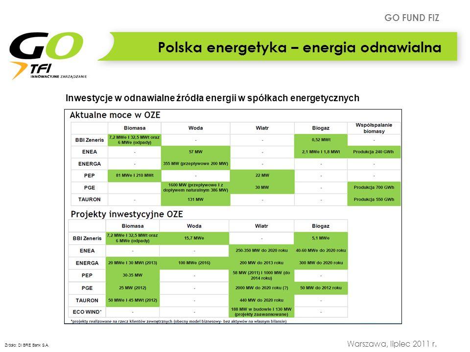 Polska energetyka – energia odnawialna