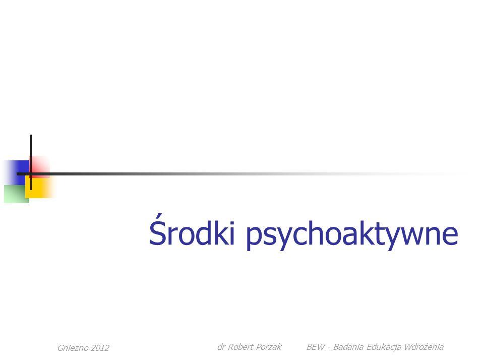 dr Robert Porzak BEW - Badania Edukacja Wdrożenia