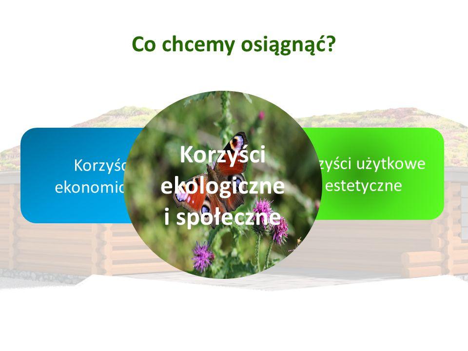 Korzyści ekologiczne i społeczne