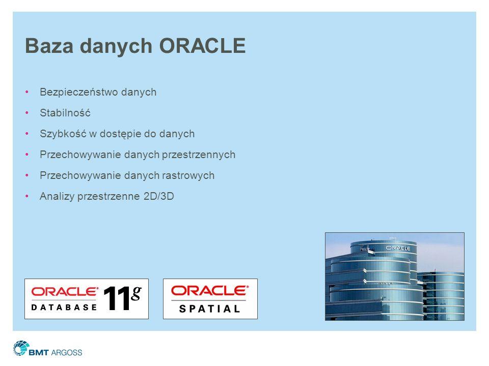 Baza danych ORACLE Bezpieczeństwo danych Stabilność