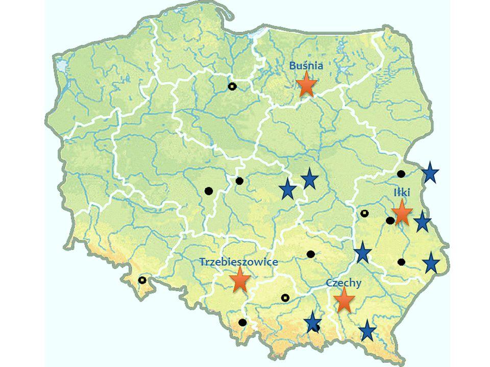 Mapa z lokalizacjami Buśnia Iłki Trzebieszowice Czechy