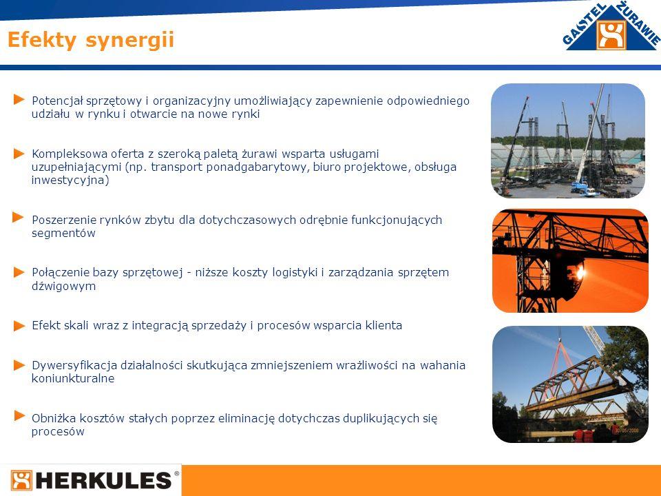 Efekty synergii Potencjał sprzętowy i organizacyjny umożliwiający zapewnienie odpowiedniego udziału w rynku i otwarcie na nowe rynki.