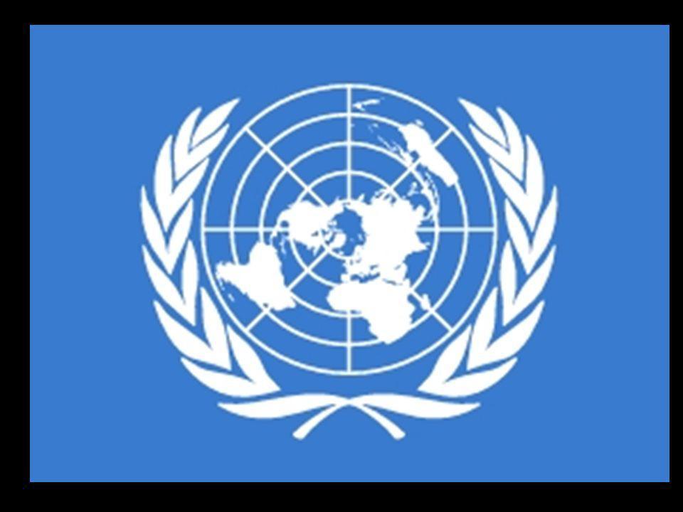 Organizacje broniące praw człowieka: