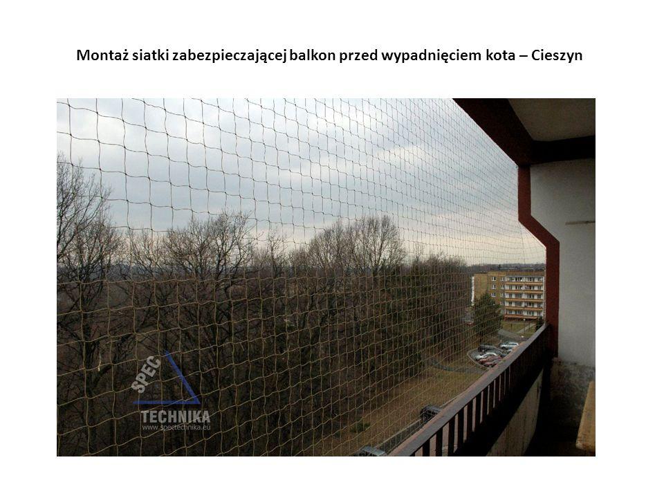 Montaż siatki zabezpieczającej balkon przed wypadnięciem kota – Cieszyn