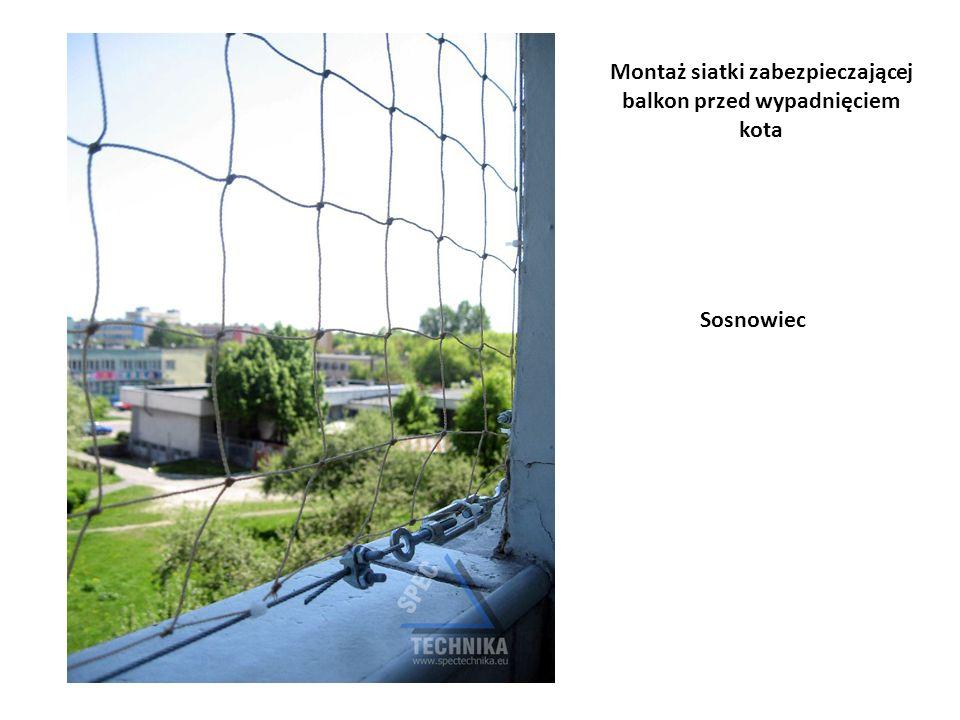 Montaż siatki zabezpieczającej balkon przed wypadnięciem kota