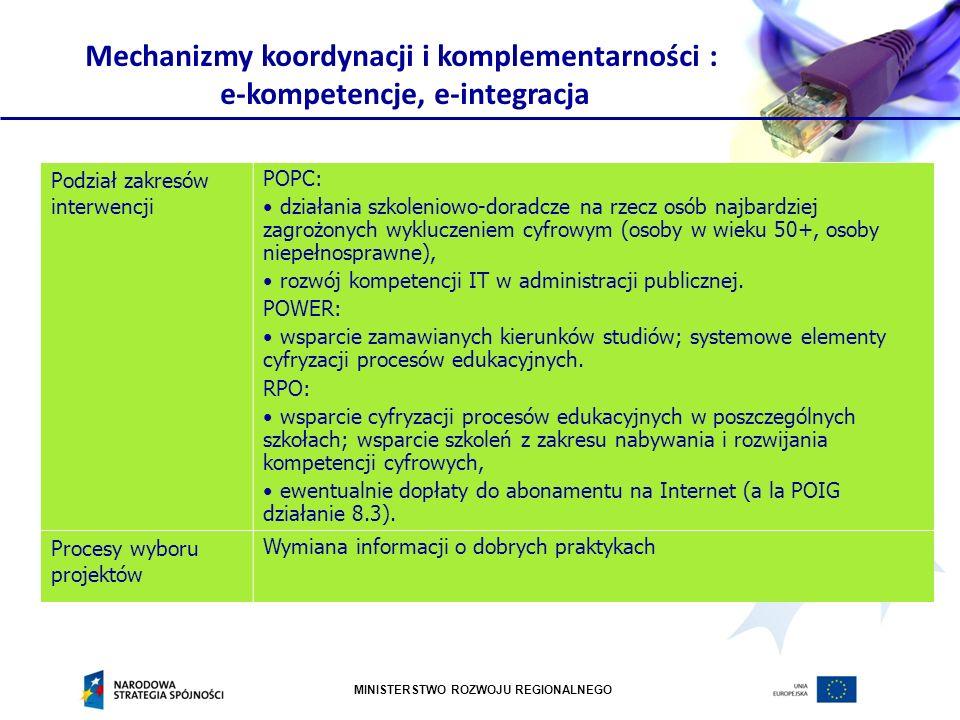 Mechanizmy koordynacji i komplementarności : e-kompetencje, e-integracja
