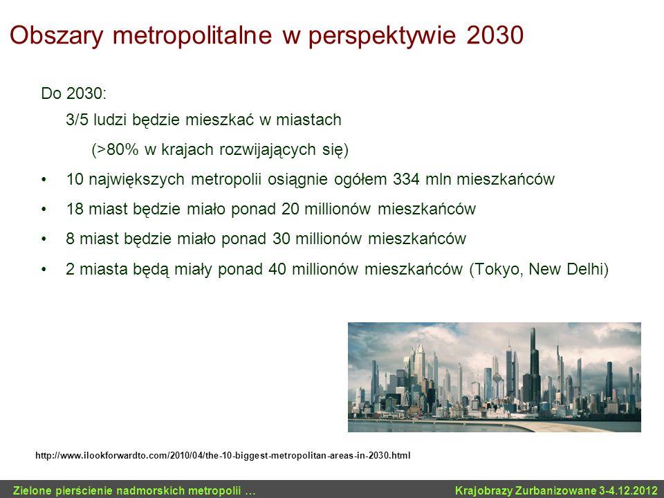 Obszary metropolitalne w perspektywie 2030