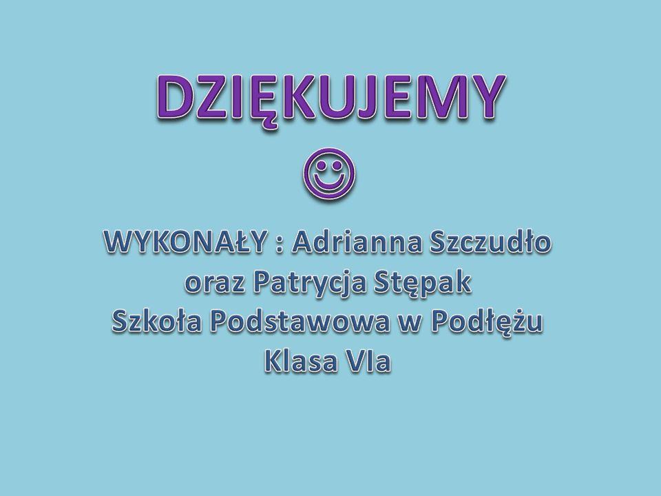 DZIĘKUJEMY  WYKONAŁY : Adrianna Szczudło oraz Patrycja Stępak