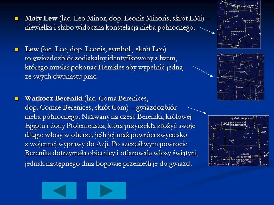 . Mały Lew (łac. Leo Minor, dop. Leonis Minoris, skrót LMi) – niewielka i słabo widoczna konstelacja nieba północnego.