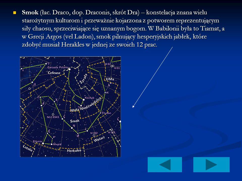 Smok (łac. Draco, dop. Draconis, skrót Dra) – konstelacja znana wielu starożytnym kulturom i przeważnie kojarzona z potworem reprezentującym siły chaosu, sprzeciwiające się uznanym bogom. W Babilonii była to Tiamat, a w Grecji Argos (vel Ladon), smok pilnujący hesperyjskich jabłek, które zdobyć musiał Herakles w jednej ze swoich 12 prac.