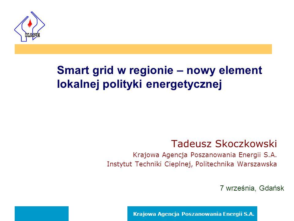 Smart grid w regionie – nowy element lokalnej polityki energetycznej