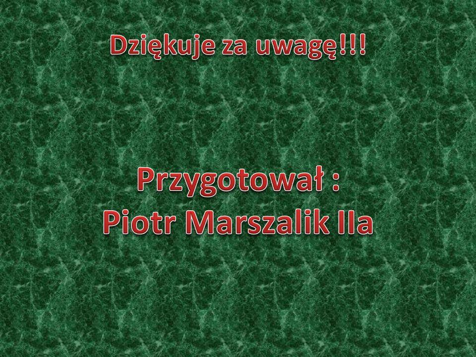 Przygotował : Piotr Marszalik IIa