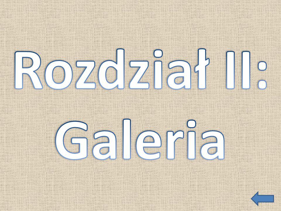 Rozdział II: Galeria