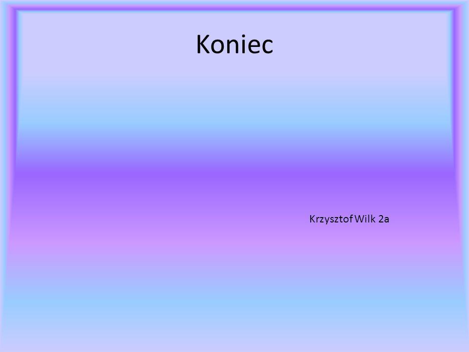 Koniec Krzysztof Wilk 2a