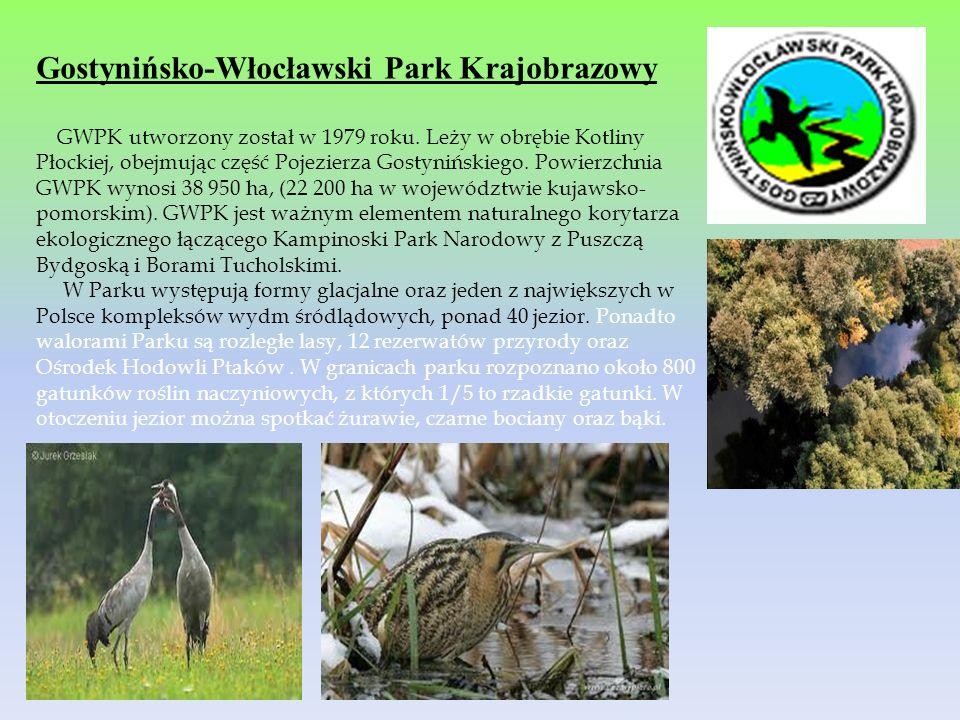 Gostynińsko-Włocławski Park Krajobrazowy