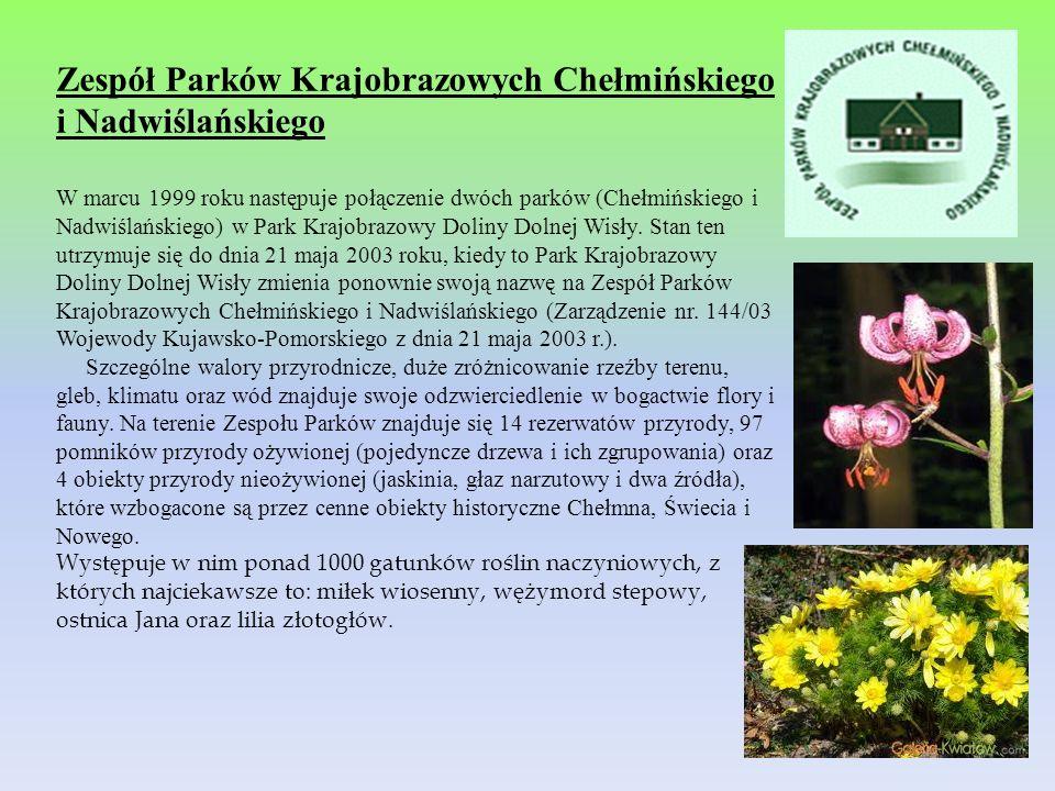 Zespół Parków Krajobrazowych Chełmińskiego i Nadwiślańskiego