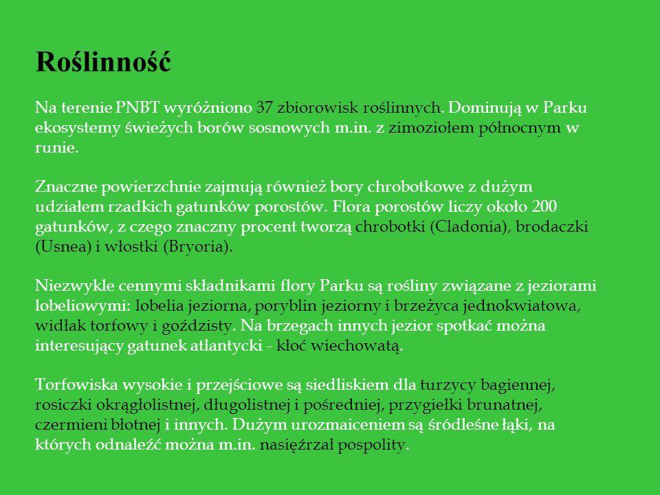 Roślinność Na terenie PNBT wyróżniono 37 zbiorowisk roślinnych