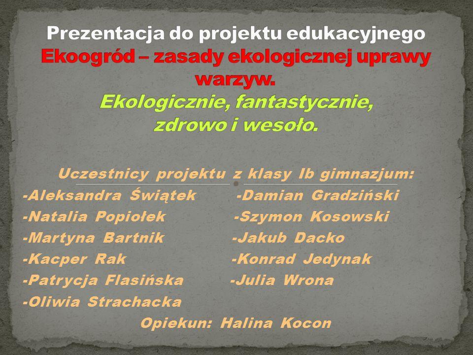 Uczestnicy projektu z klasy Ib gimnazjum: