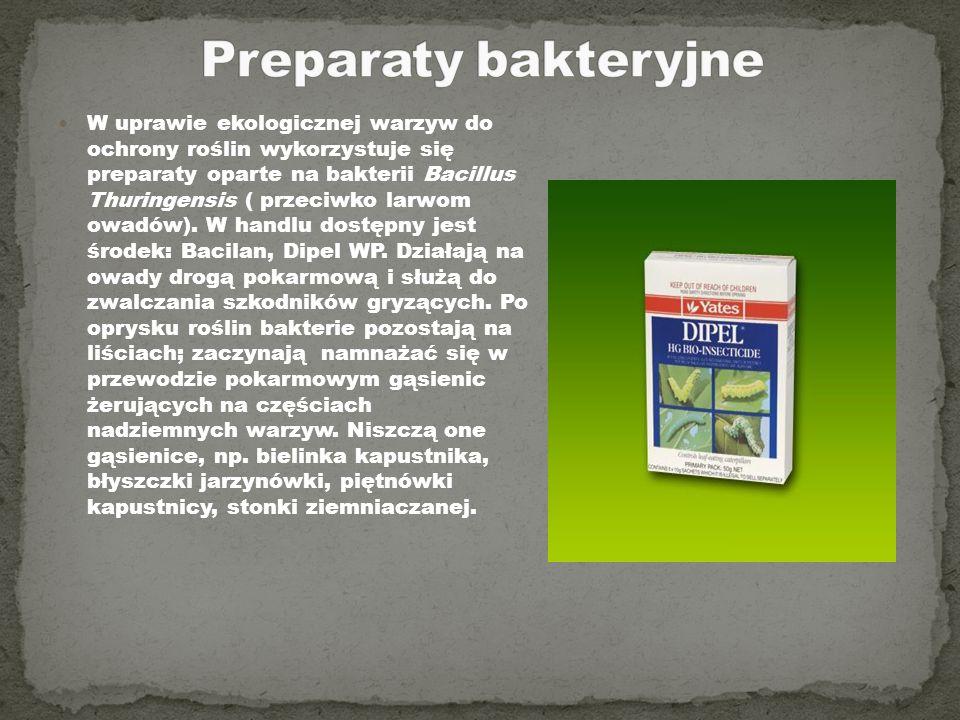 Preparaty bakteryjne