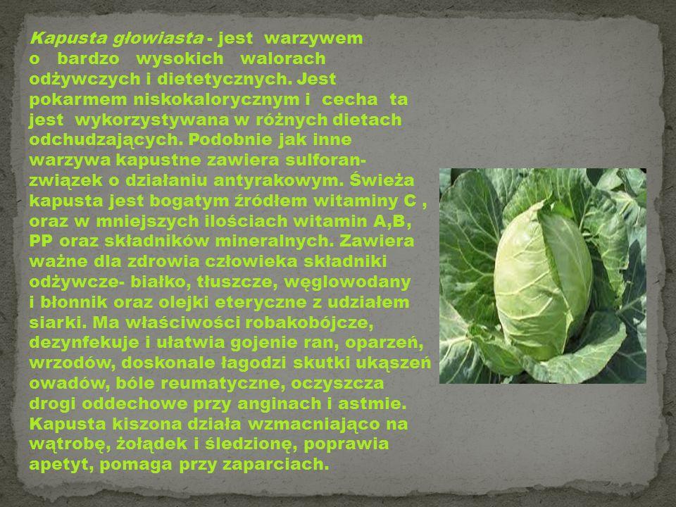 Kapusta głowiasta - jest warzywem