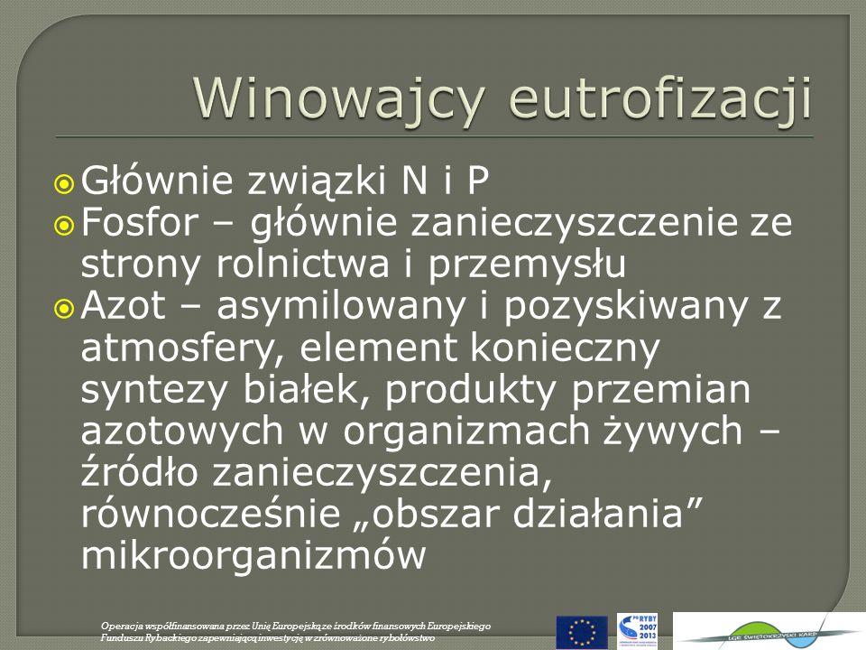 Winowajcy eutrofizacji