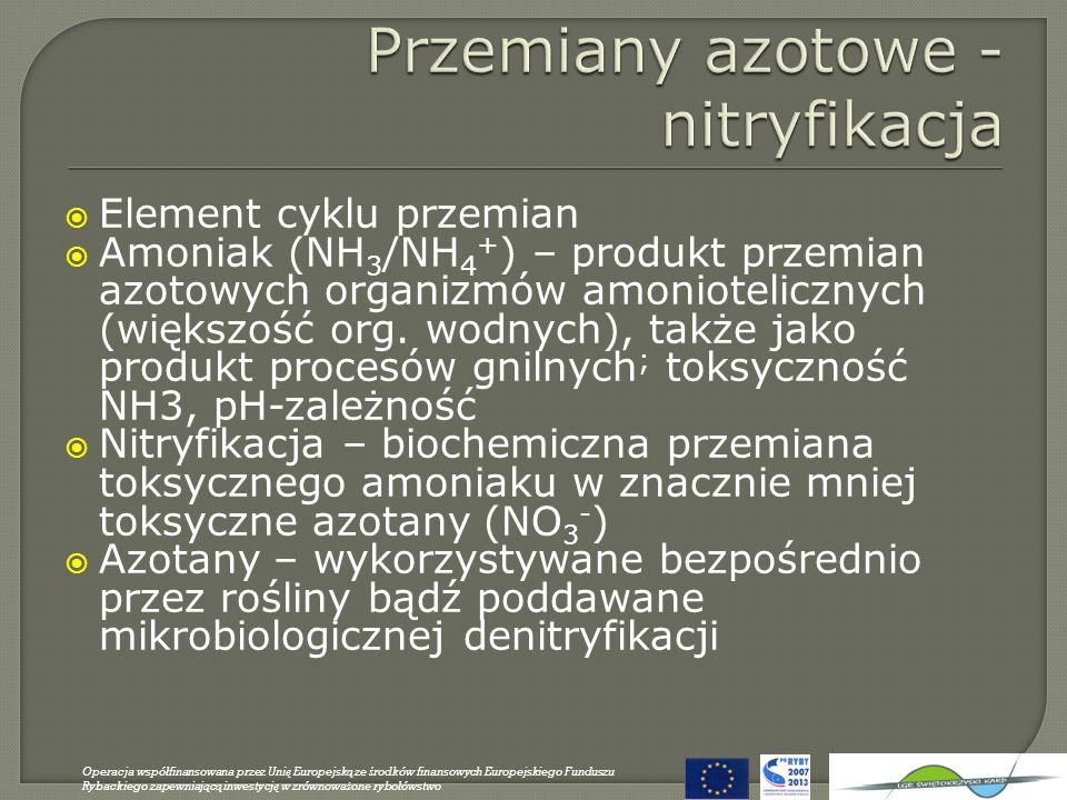 Przemiany azotowe - nitryfikacja