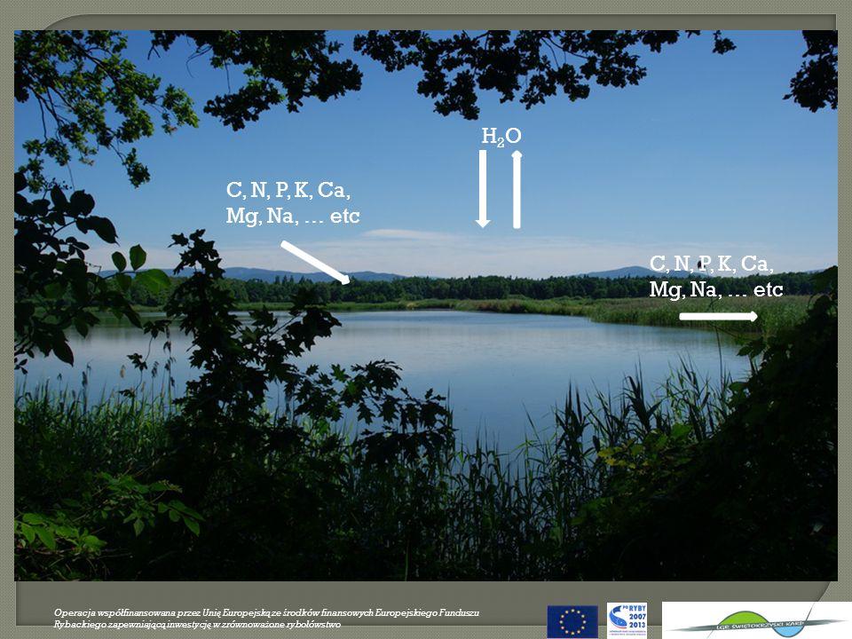H2O C, N, P, K, Ca, Mg, Na, … etc C, N, P, K, Ca, Mg, Na, … etc