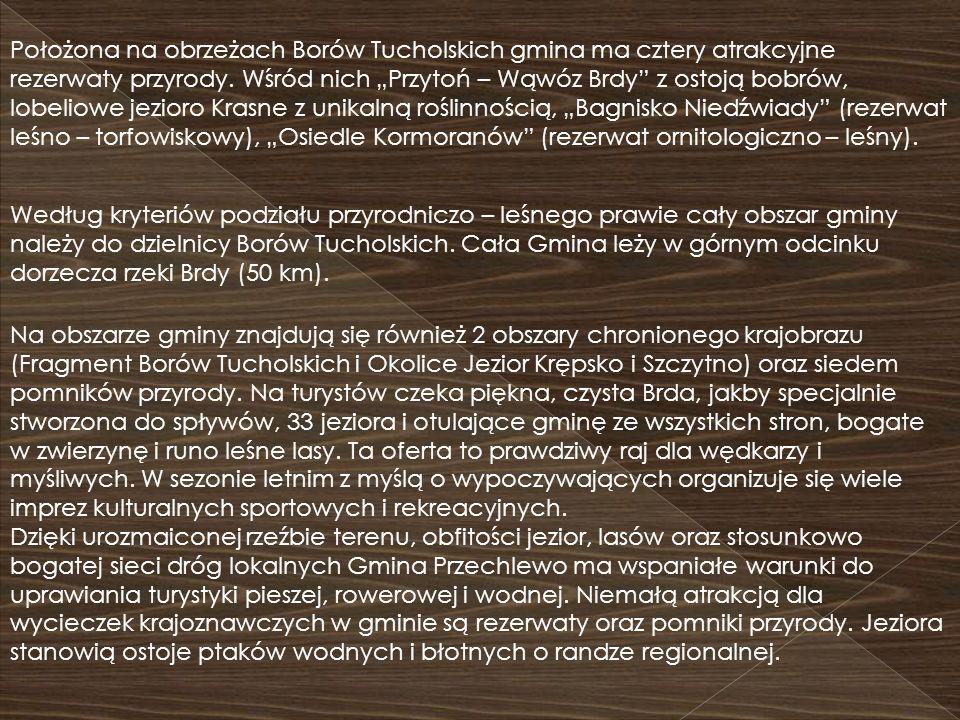 """Położona na obrzeżach Borów Tucholskich gmina ma cztery atrakcyjne rezerwaty przyrody. Wśród nich """"Przytoń – Wąwóz Brdy z ostoją bobrów, lobeliowe jezioro Krasne z unikalną roślinnością, """"Bagnisko Niedźwiady (rezerwat leśno – torfowiskowy), """"Osiedle Kormoranów (rezerwat ornitologiczno – leśny)."""