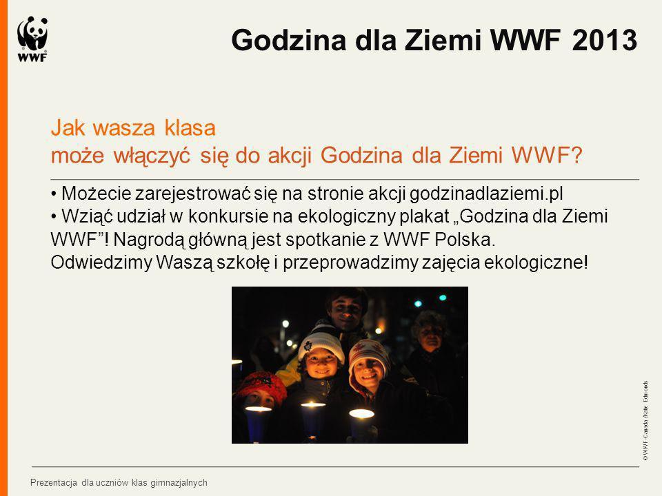 Godzina dla Ziemi WWF 2013 Jak wasza klasa