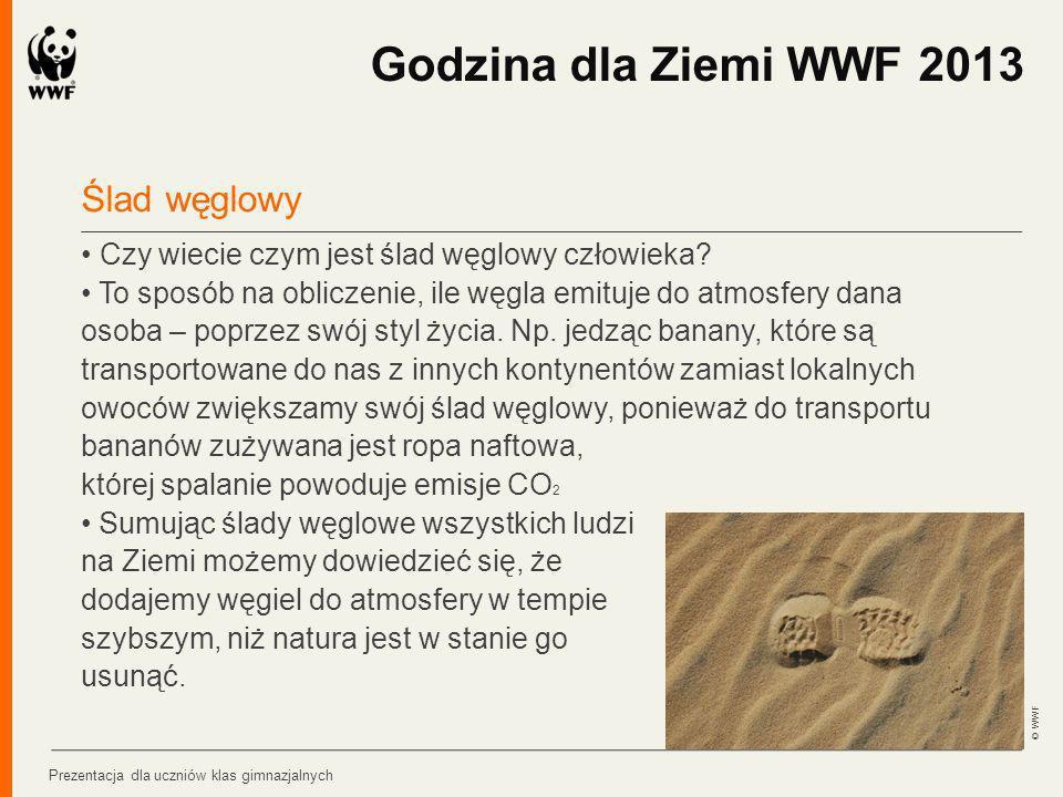 Godzina dla Ziemi WWF 2013 Ślad węglowy